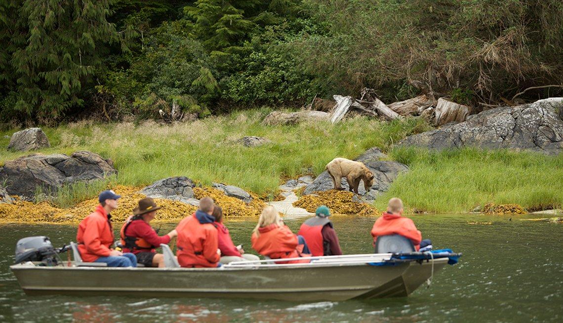 Grupo de turistas en un bote observa a un oso.