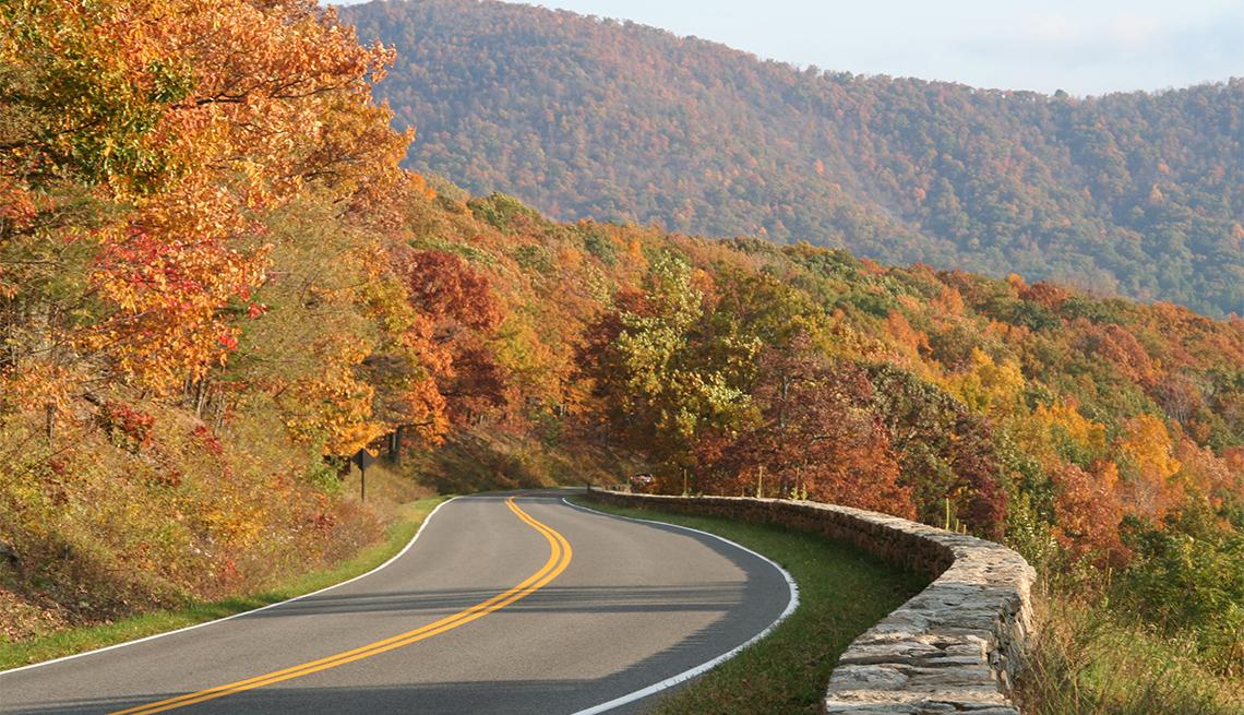 item 8 of Gallery image - Winding road in Shenandoah National Park in Virginia
