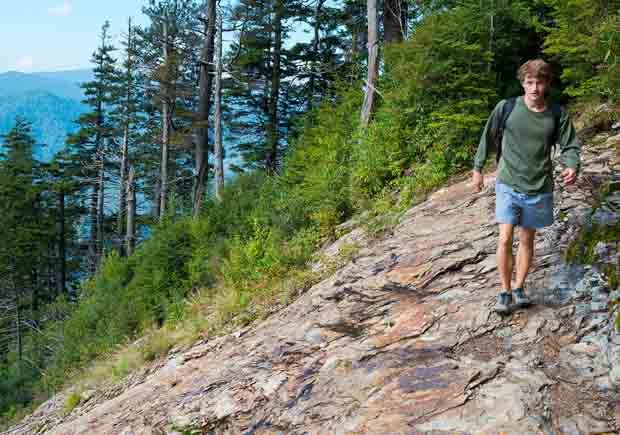 Parques con increíbles senderos para caminar - Great Smoky Mountains National Park