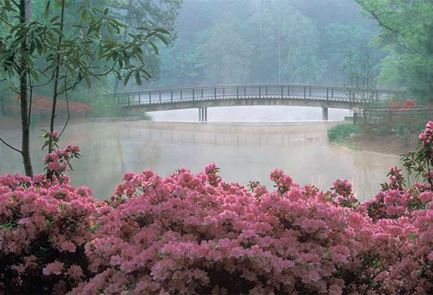Excelentes escapes para madre e hija - Jardines Callaway en Atlanta, Georgia