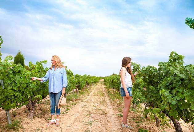 Excelentes escapes para madre e hija - Madre e hija en un viñedo