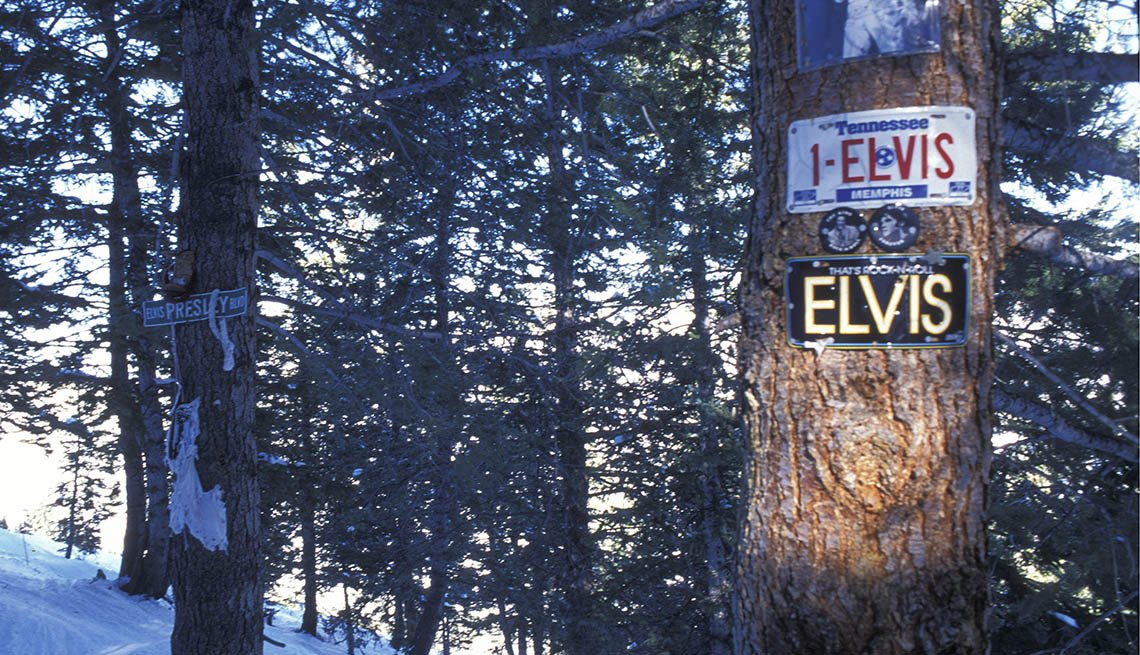 Trees In Aspen Colorado Covered With Memorial Shrine Plaques On The Trees, Strange Destinations