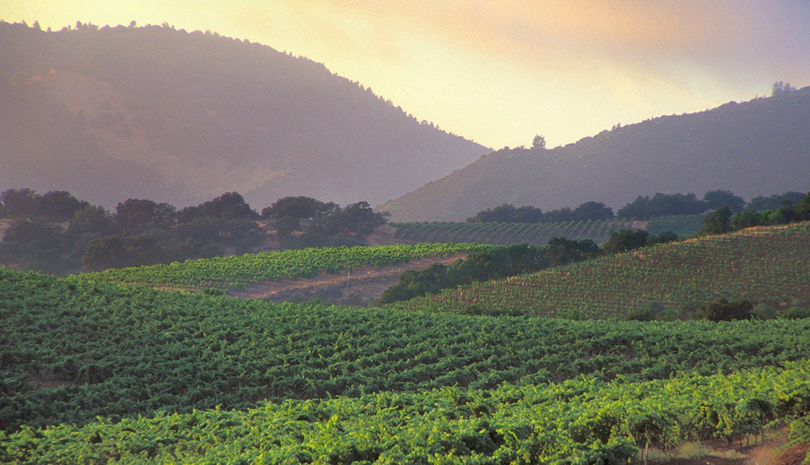 View Of Rolling Vineyards And Mountains In Sonoma Valley California, One Tank Road Trips