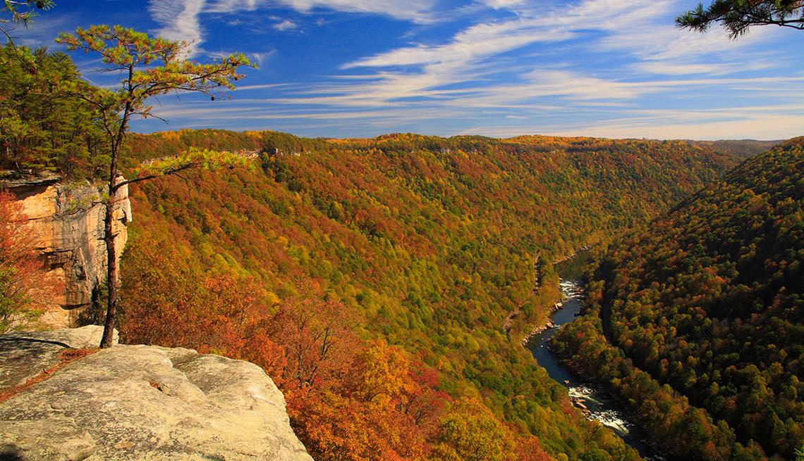 El New River, visto desde el Endless Wall Trail. New River Gorge National River, Virginia Occidental, EE.UU.