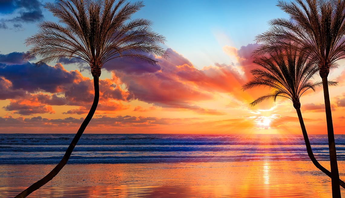 Backlit palm trees and sandy beach fills the foreground leading back to dramatic sunburt sunset and cloudscape