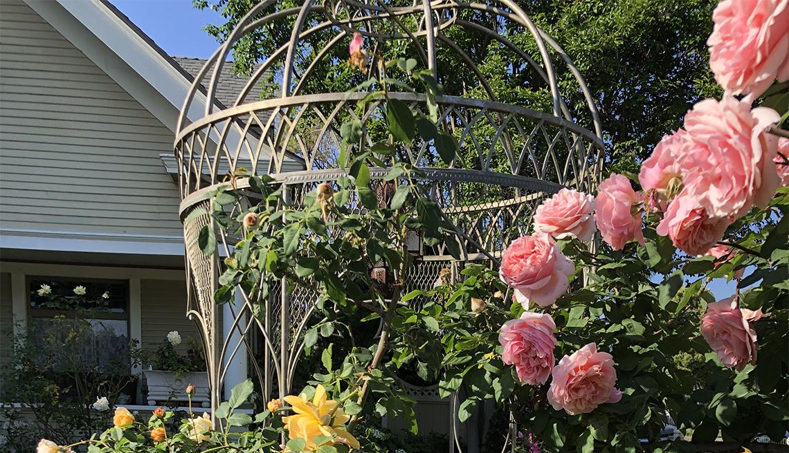 item 5 of Gallery image - Flores en jardín de Mary Lou Heard