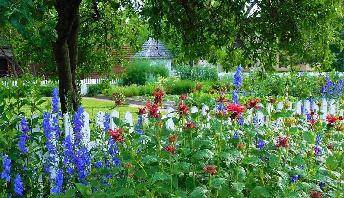 item 2 of Gallery image - flowers at Garden Club of Virginia Historic Garden Week