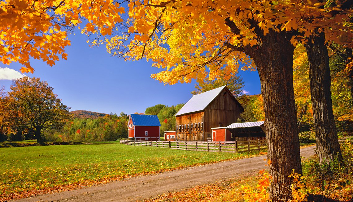 Forecast For Fall Foliage Promises Beautiful Views