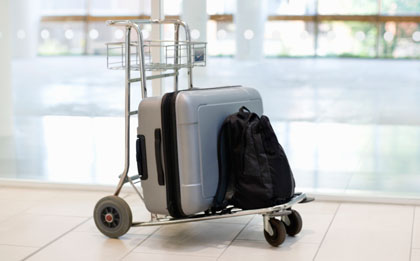 Avoiding Airport Theft