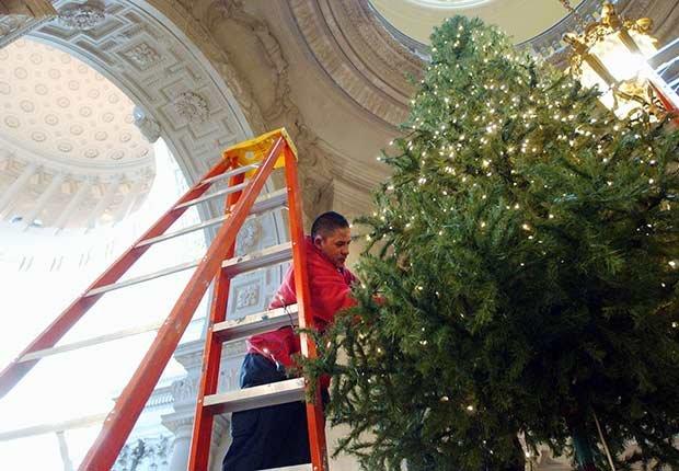 6 árboles de Navidad imponentes