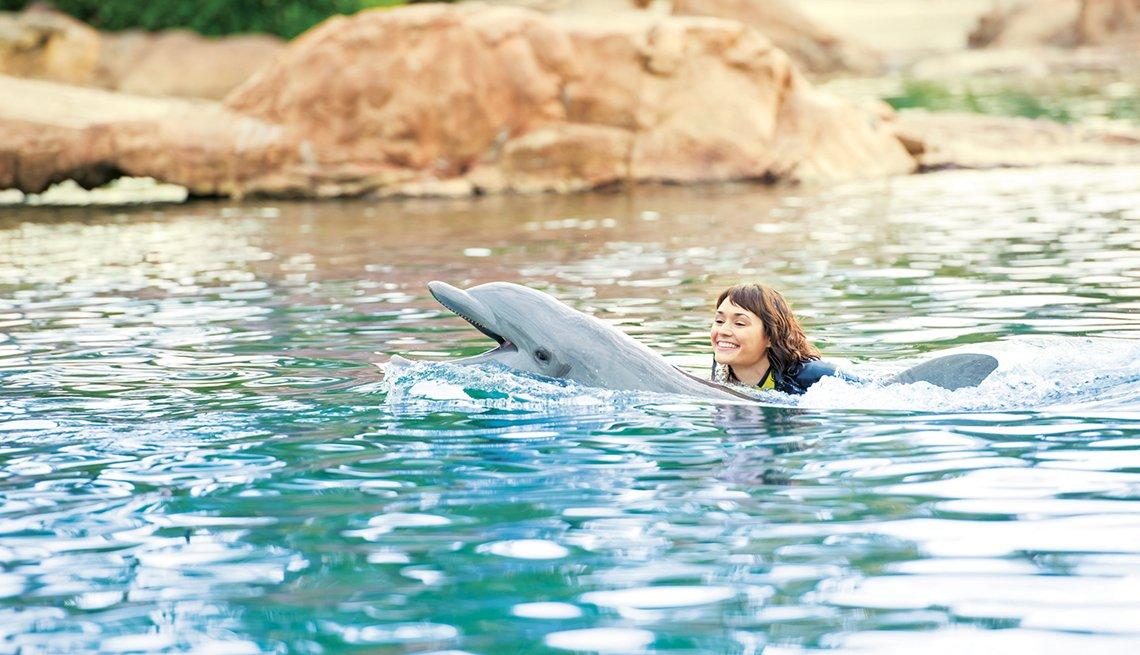 Viajaes para quinceañeras - Delfin y niña en el agua