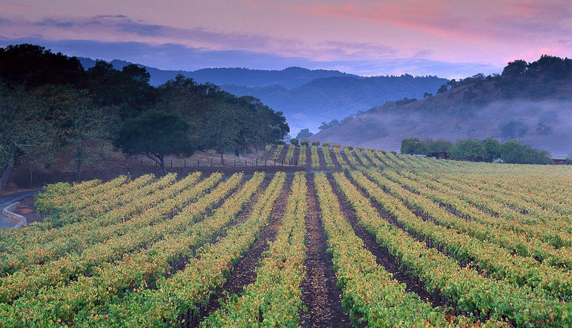 View Of Sunrise Over The Vineyards In Napa Valley California, Natural Wonders To Visit