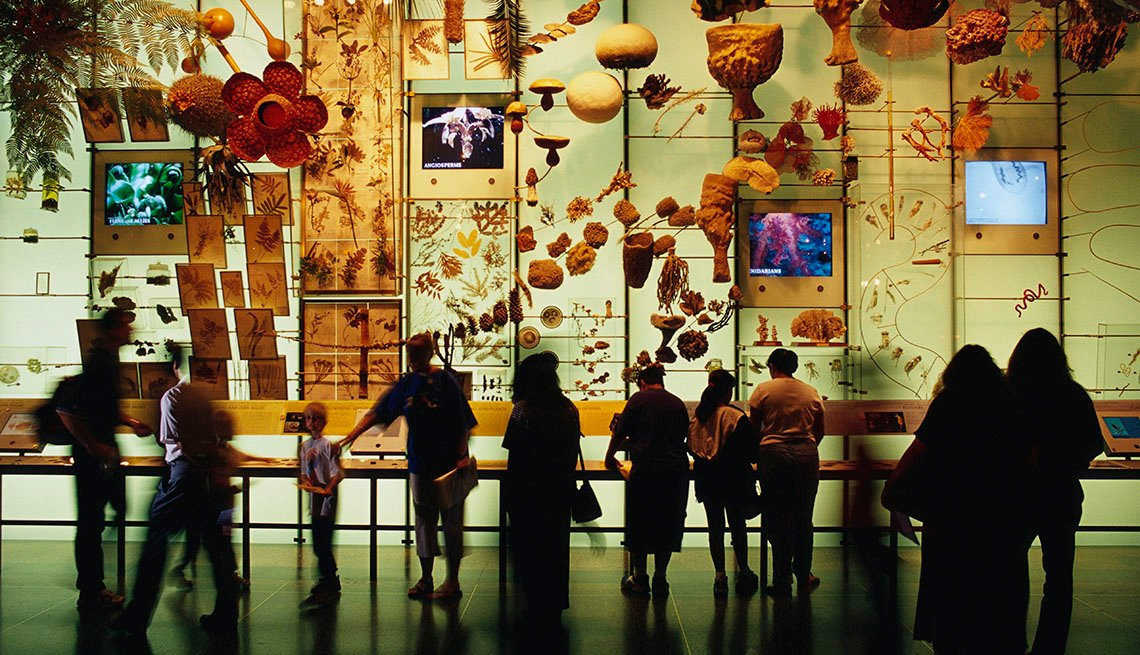 Visitors Look At Exhibit In Museum Gallery, Visit Manhattan For Cheap
