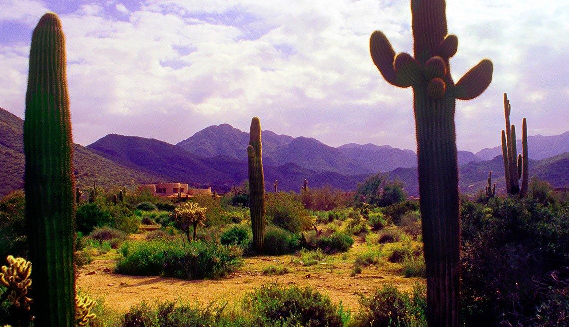 The Beautiful Scenic Desert In Scottsdale Arizona, Girlfriend Getaways