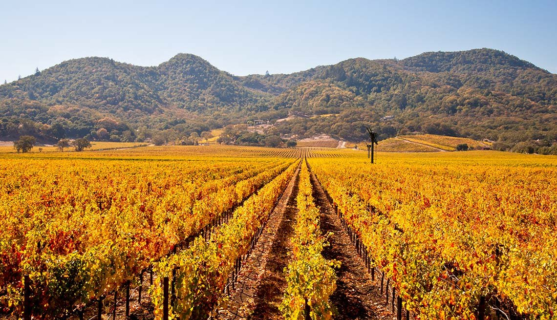 item 12 of Gallery image - The Napa Valley Vineyards In Autumn, California, Fall Vacations