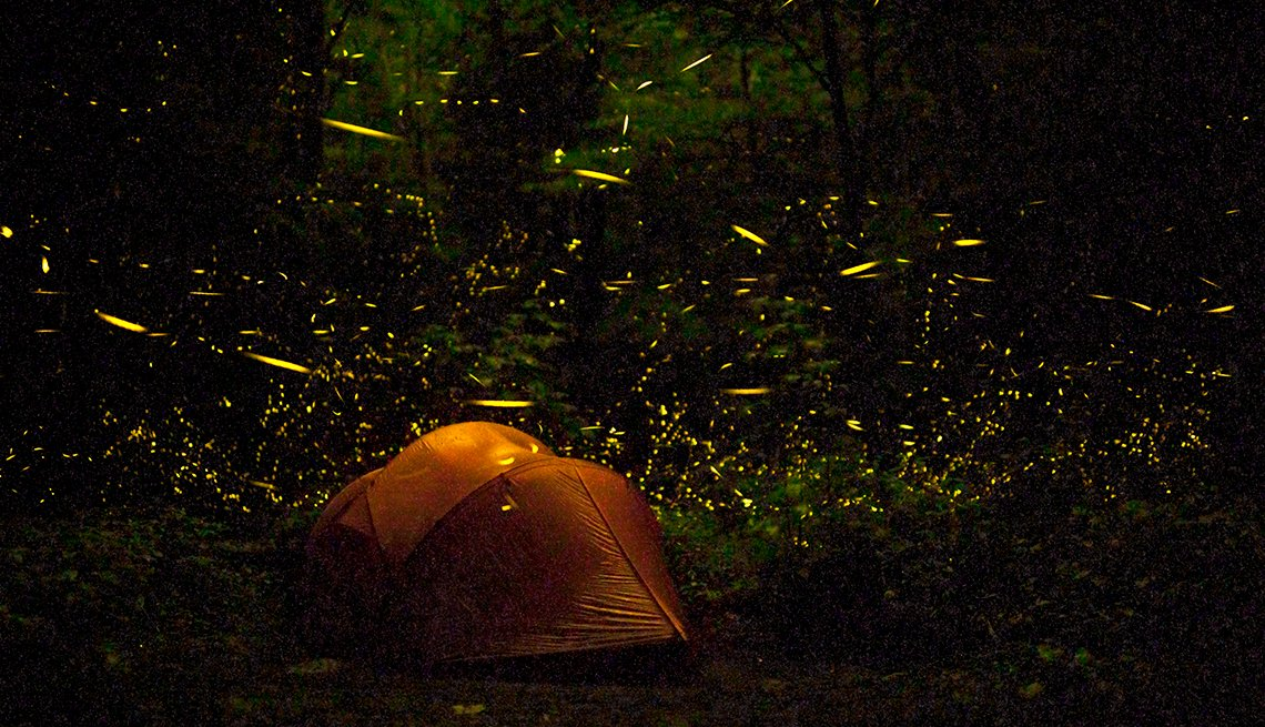 Tent at Night Surrounded by Fireflies in Great Smoky Mountains National Park, Tennessee, Hidden Wonders at American Attractions