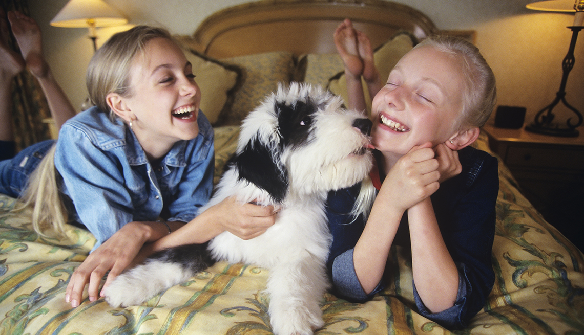 Two teenage girls pet a dog in a hotel room.