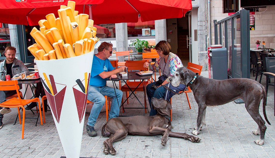 Couple eating outdoors at restaurant with two dogs.
