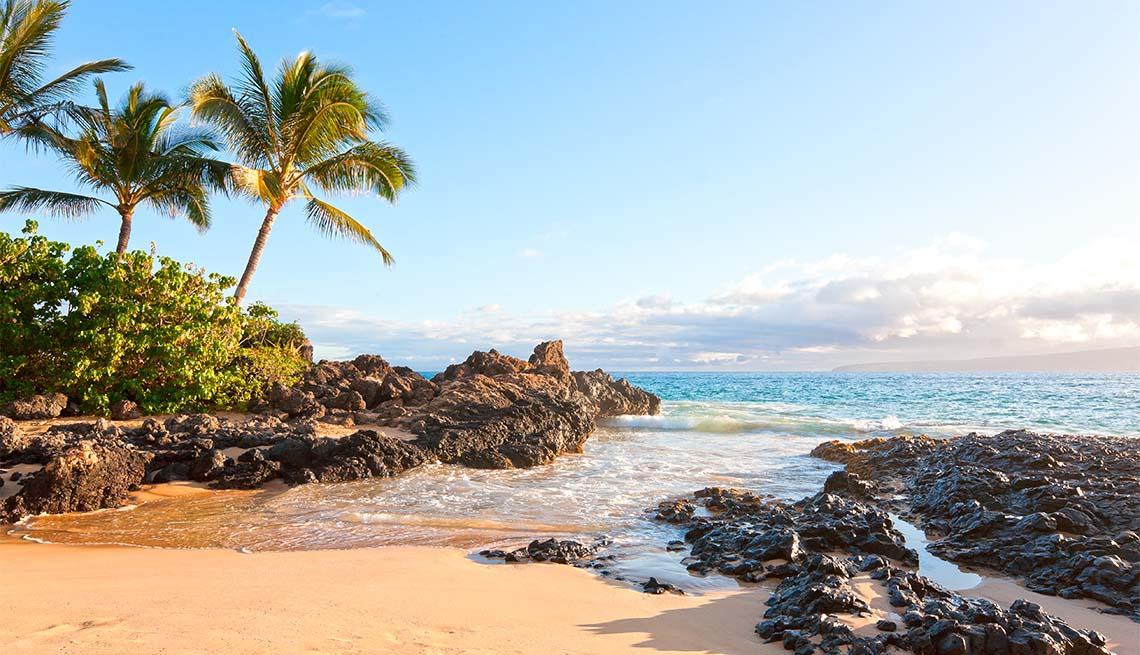 Makena cove tropical palm tree beach in Makena, Maui, Hawaii