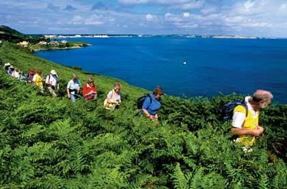 Un grupo de personas haciendo una caminata al border del mar