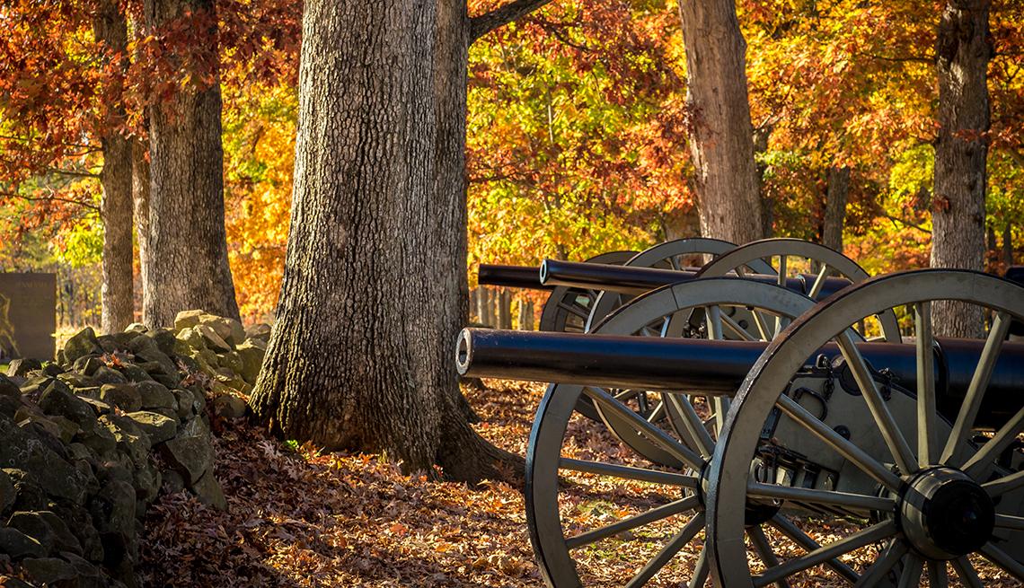 item 5 of Gallery image - Cañones entre los árboles en Gettysburg.