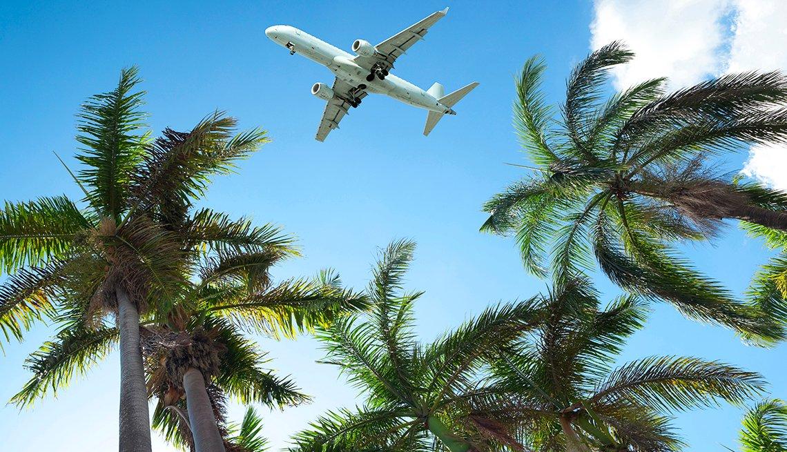 Vista de un avión en el aire y algunas palmeras