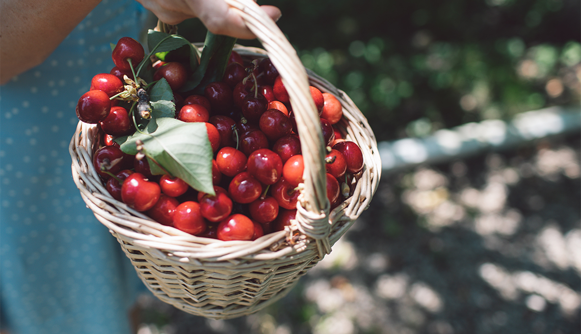 woman holding a basket of cherries