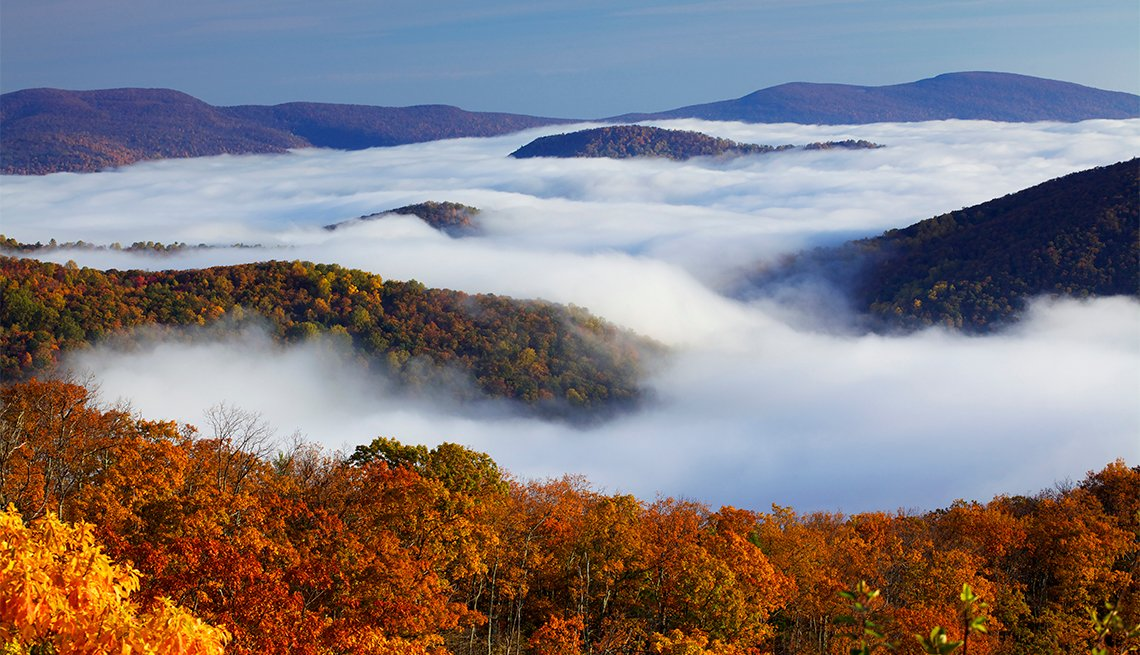 Autumn colors in Shenandoah National Park, above the clouds.