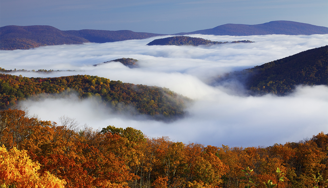 item 6 of Gallery image - Autumn colors in Shenandoah National Park, above the clouds.