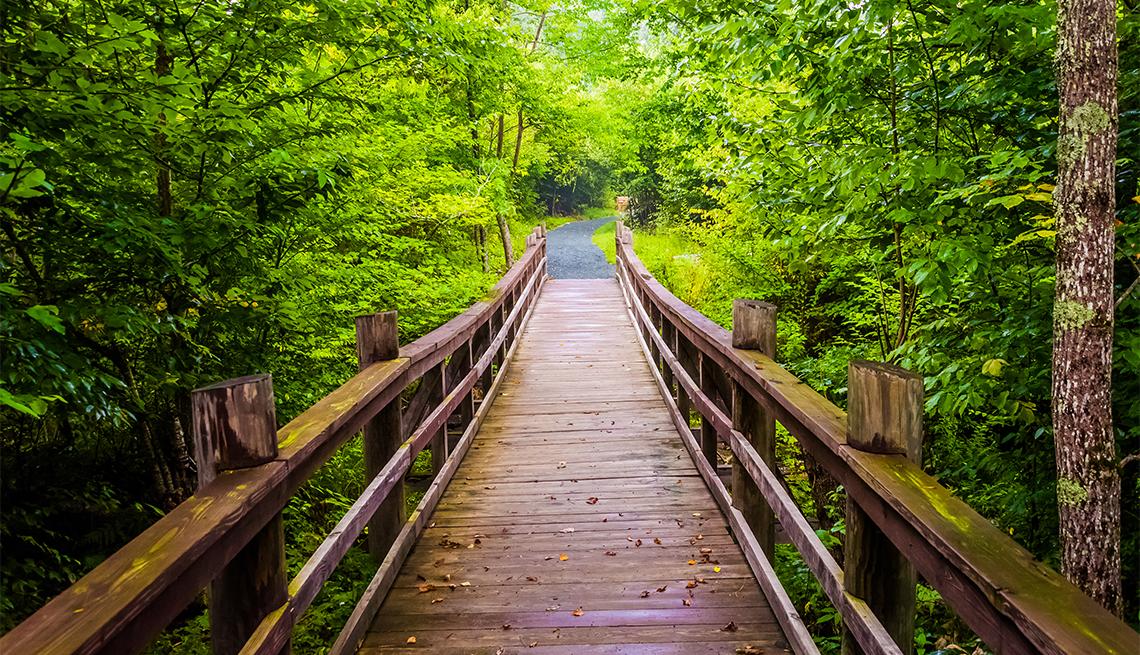 item 8 of Gallery image - Walking bridge on the Limberlost Trail in Shenandoah National Park, Virginia.