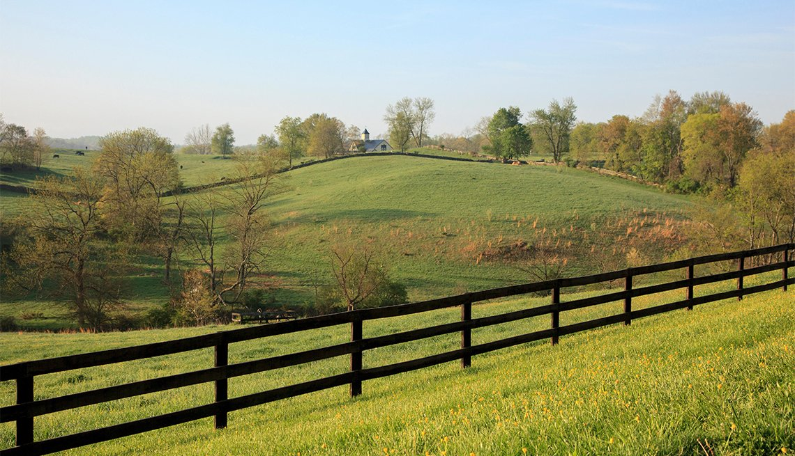 item 8 of Gallery image - Farm and Countryside, Goodstone Inn, Middleburg, Virginia