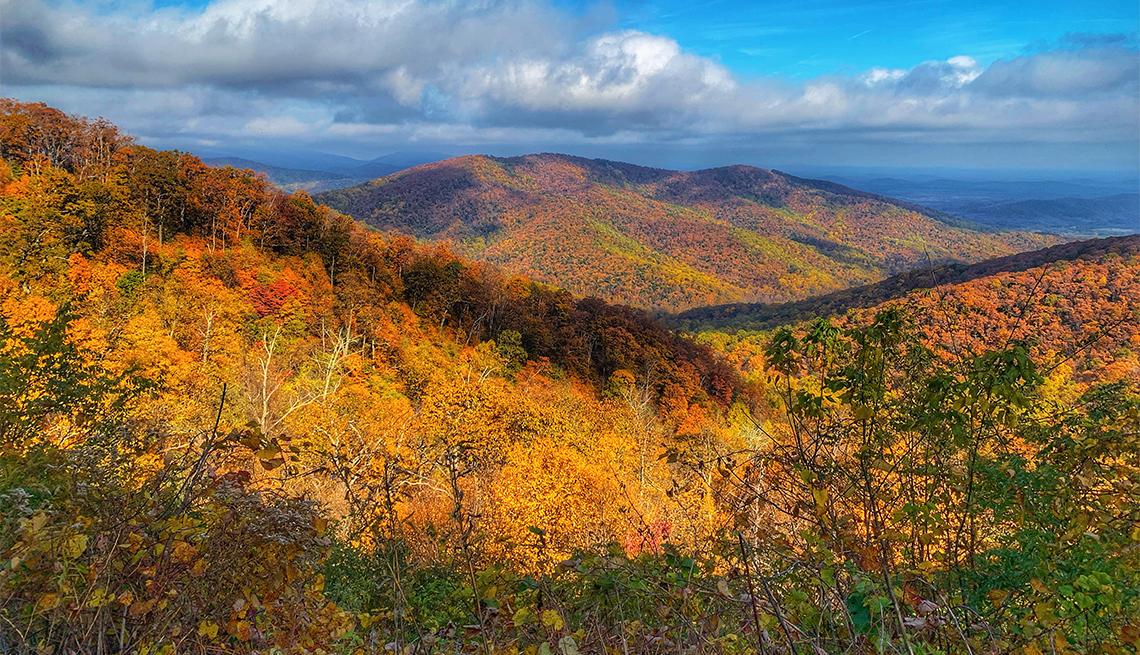 item 5 of Gallery image - Follaje de otoño en el Parque Nacional Shenandoah