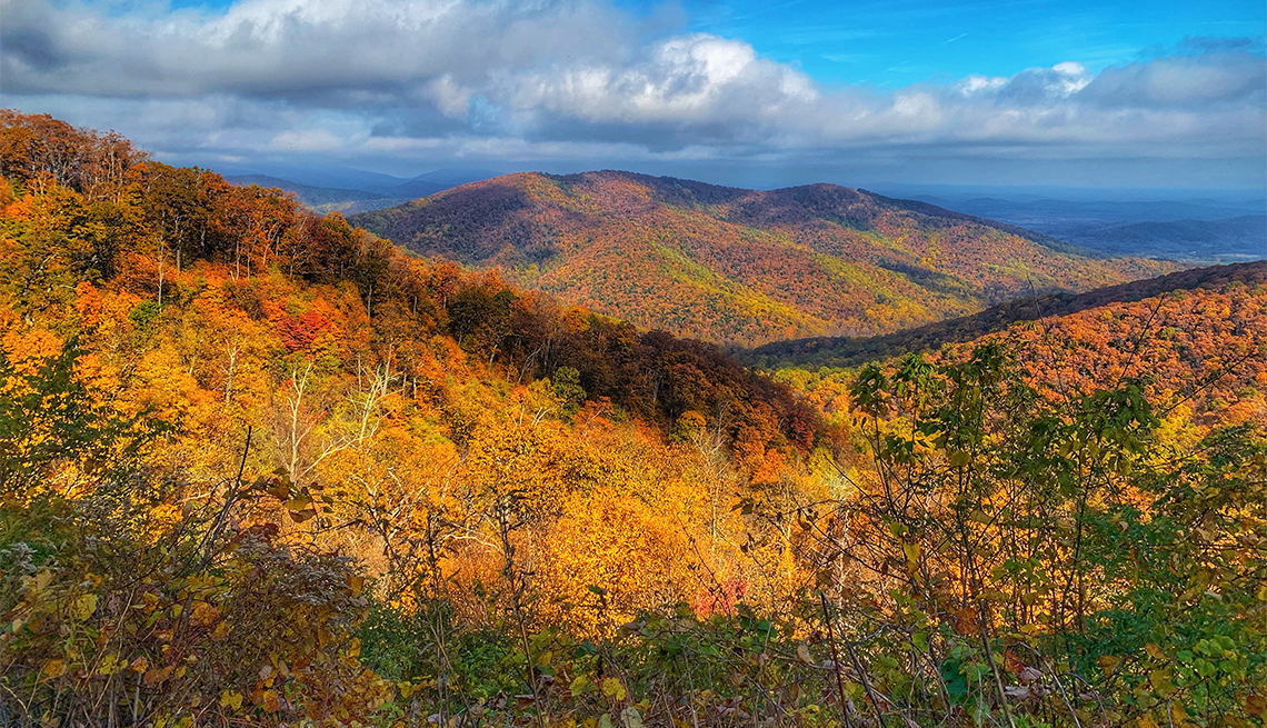 item 5 of Gallery image - Fall foliage in Shenandoah National Park