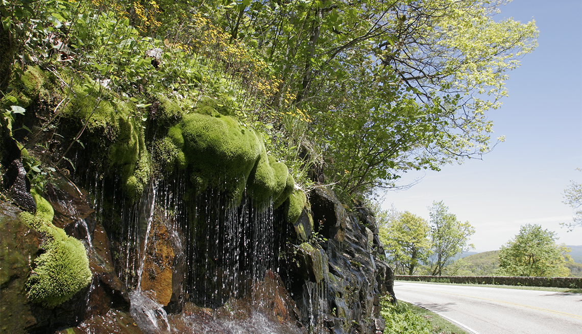 item 3 of Gallery image - Spring water falling from rocks on Skyline Drive