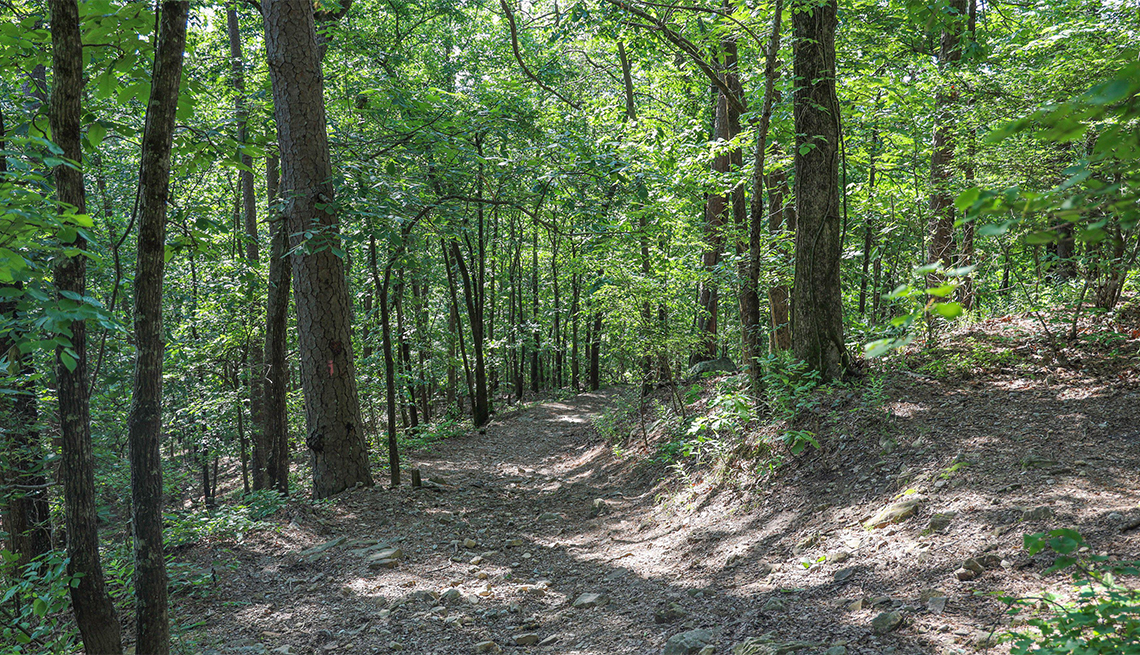 item 7 of Gallery image - Gulpha Gorge Hiking Trail in Hot Springs National Park