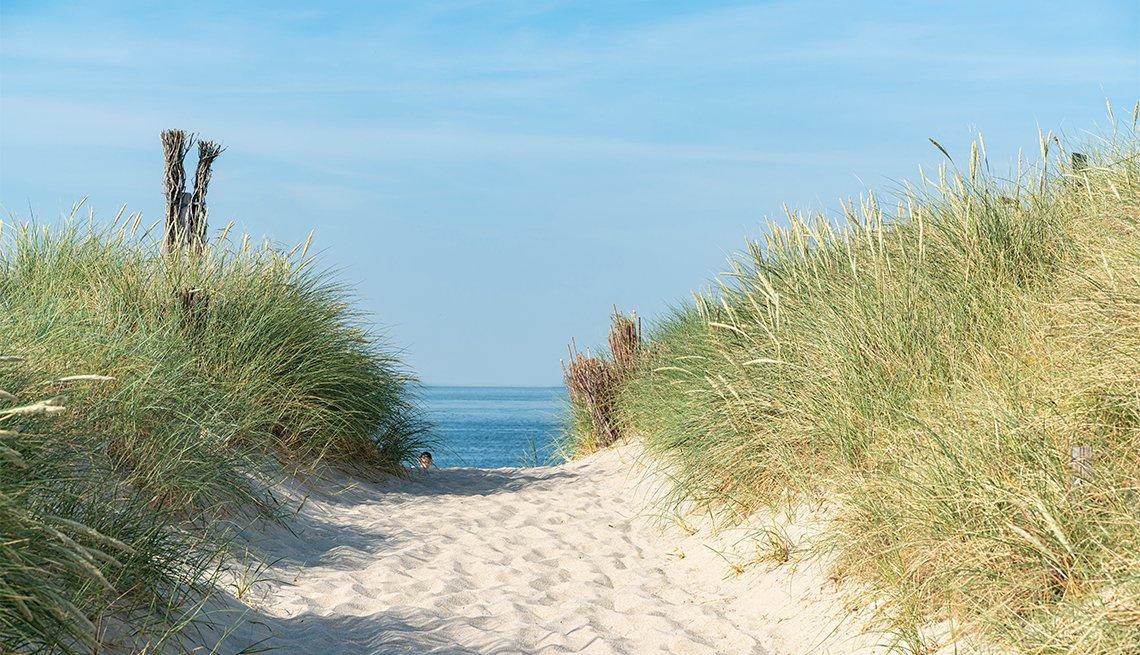 Camino de arena que lleva a la playa