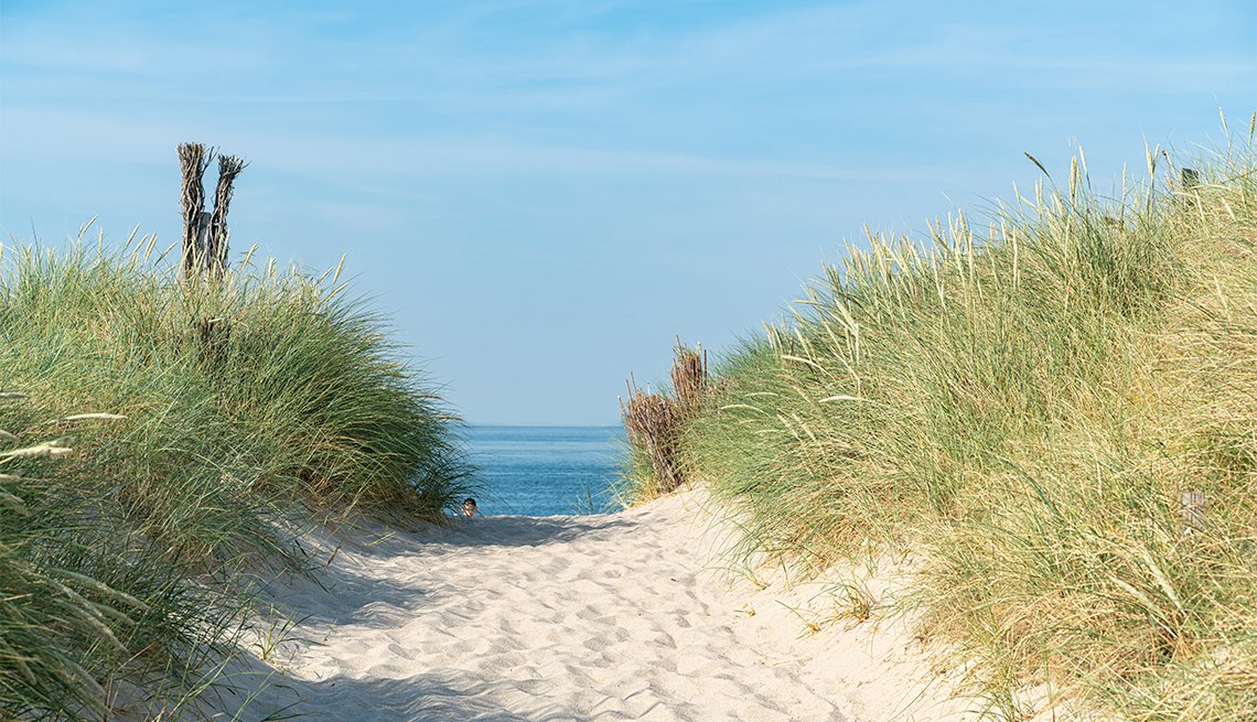 Dune with beach grass in the foreground