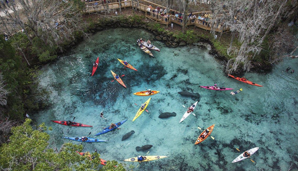 Vista aérea de personas montadas en kayaks sobre el agua