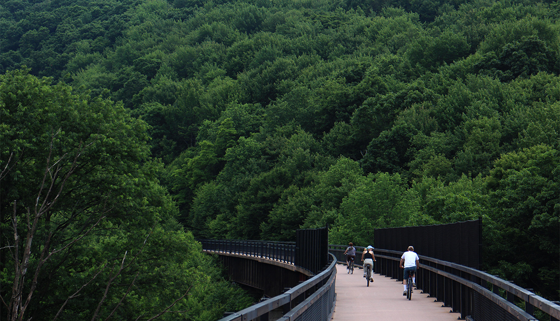 item 2 of Gallery image - Great Allegheny Passage Bike Rail Trail