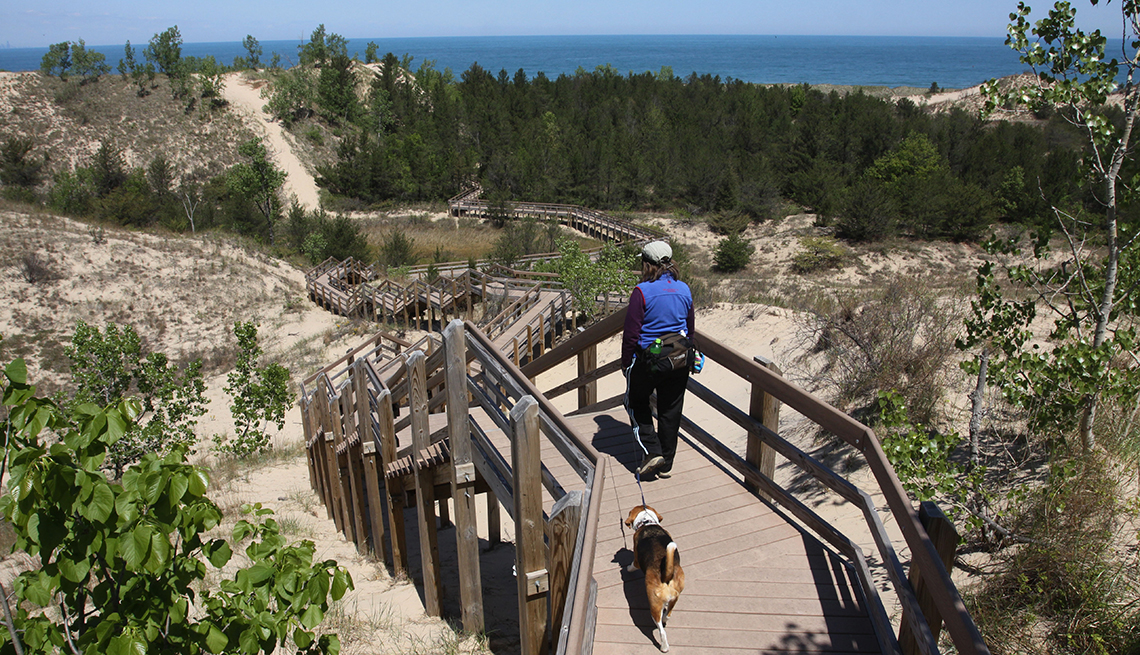 item 4 of Gallery image - woman and dog walking on elevated boardwalk trail over the dunes at indiana dunes park
