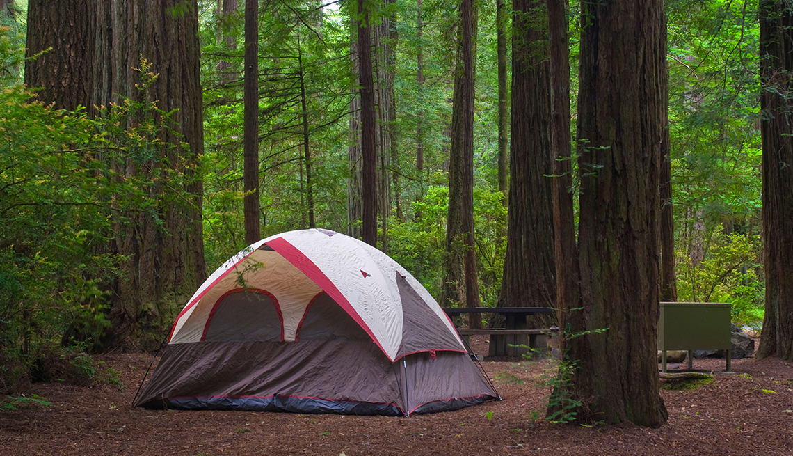 item 8 of Gallery image - a tent at a campsite in jedediah smith park