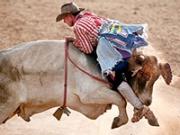 Payaso de rodeo - Trabajos inusuales y bien remunerados