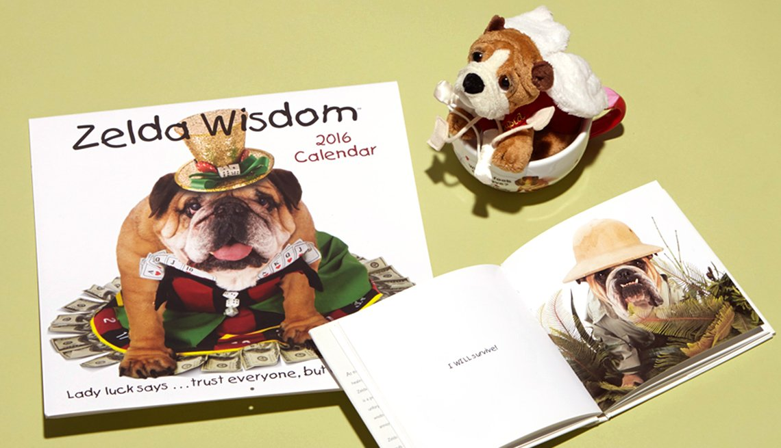 Carol Gardner's Zelda Wisdom products