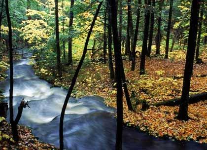 Un día de otoño en las montañas blancas en New Hampshire, USA.