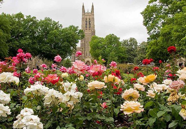 Lugares para vivir la jubilación y aprender - Durham, N.C.