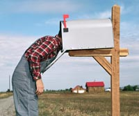 Hombre con su cabeza en una caja de correo buscando su tarjeta de seguro social