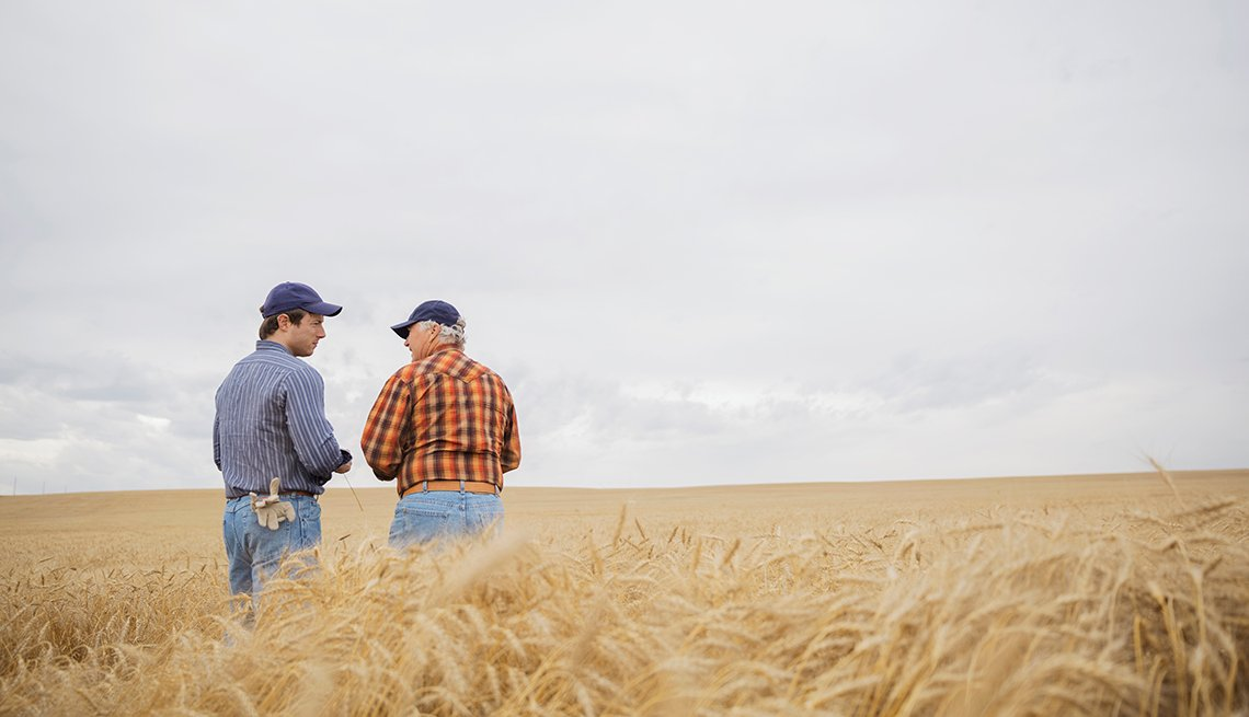 Farmers standing in a wheat field
