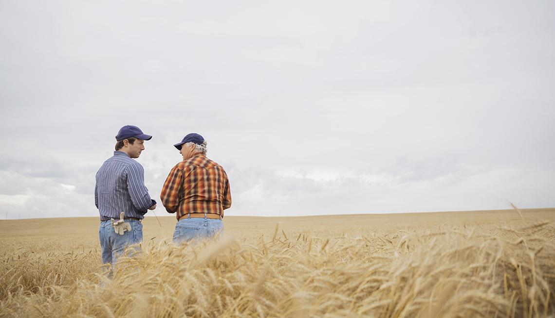 Farmers standing in a wheat field