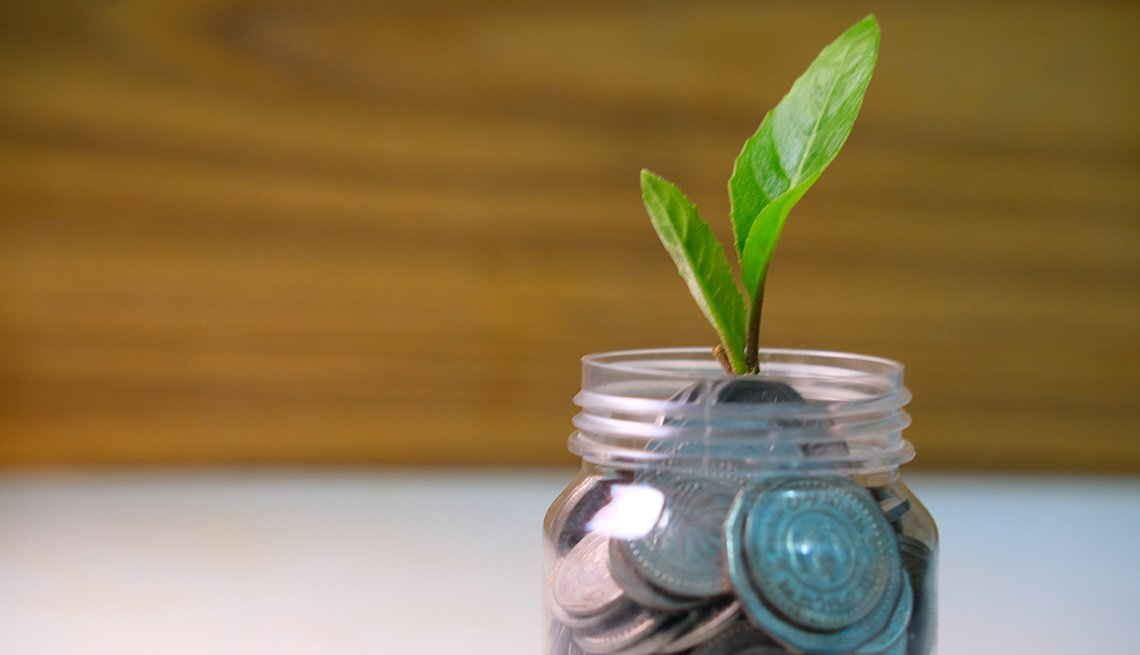 money in a jar with a plant growing out of it