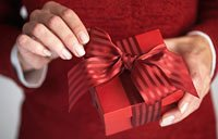 5 Great Holiday Jobs for Retirees